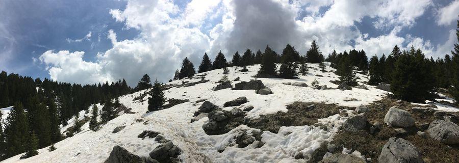 Photographe-annecy-Haute-Savoie-Aviernoz-74-Parmelan